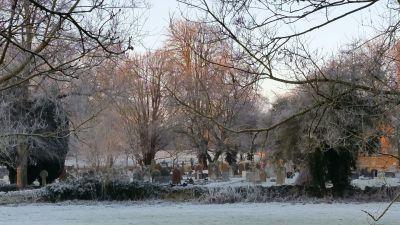 Misty churchyard