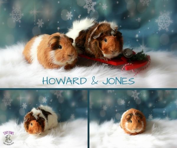 Howard and Jones
