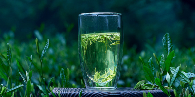 How to Make a Good Cup of Tea --- Brewing Green Tea