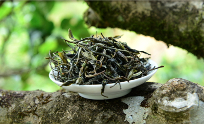 Tea Encylopedia: pu-erh tea