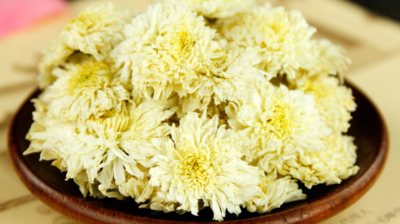 herbal tea: Chrysanthemum Flower Tea