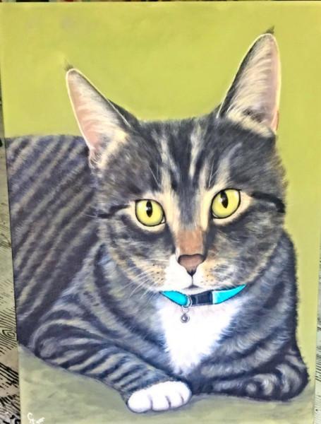 Kay's Cat