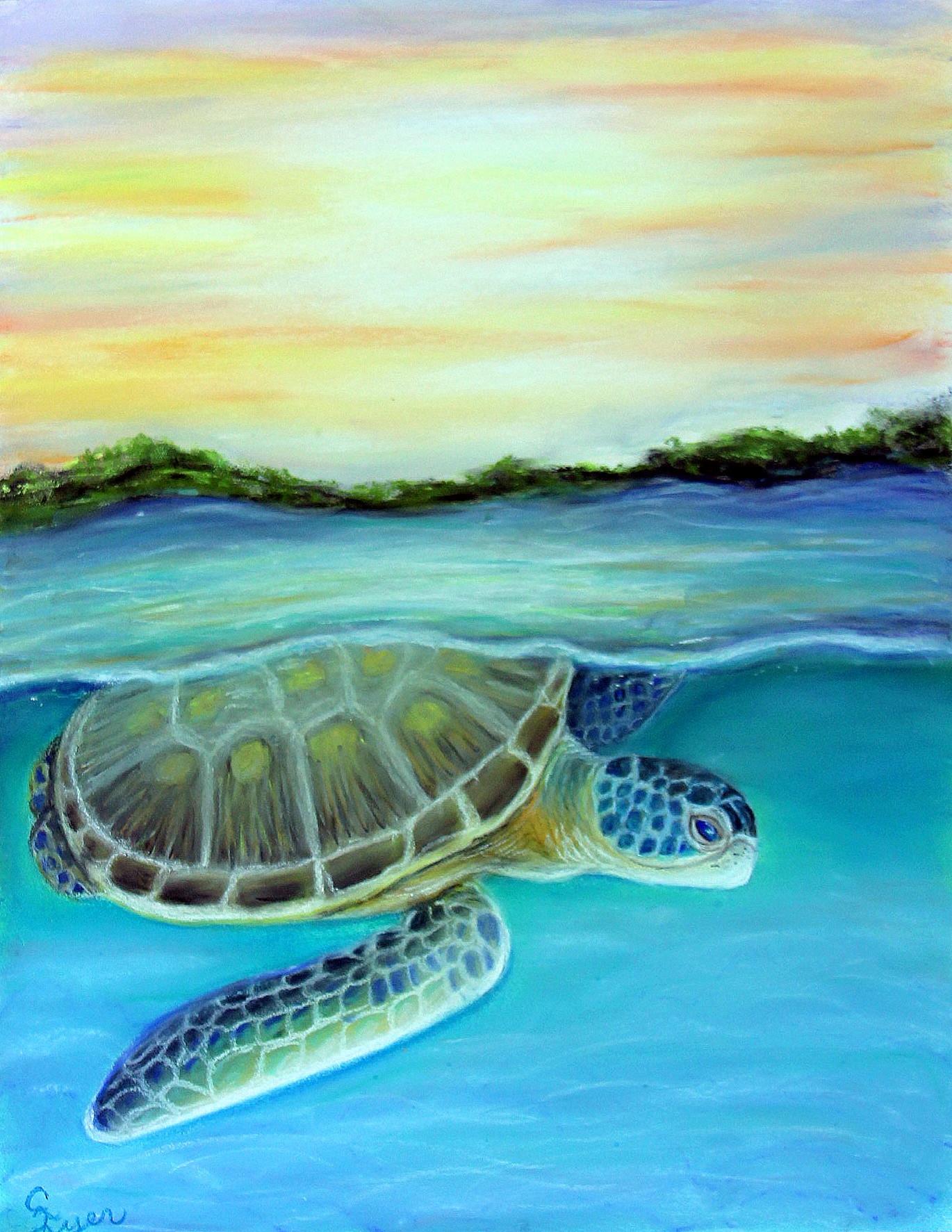 Sea Turtle at Dusk