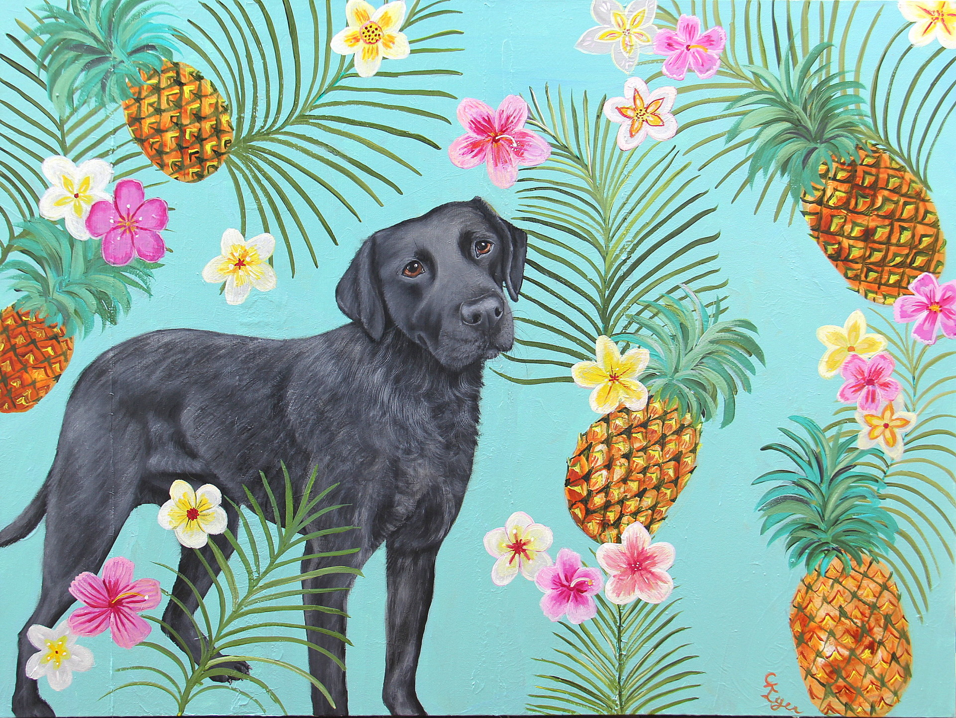 Large Lab and Pineapples