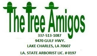 The Tree Amigos-Lake Charles Licensed Arborist offering Tree Service