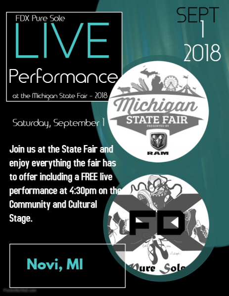 Live Performance at the Michigan State Fair