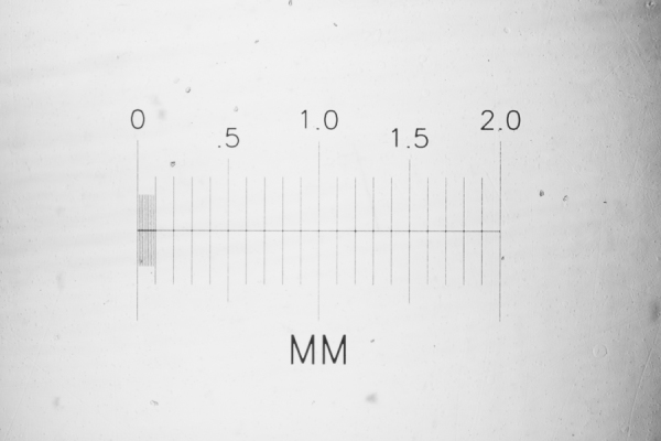 stage micrometer, microscopy, micron, milimeter