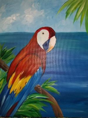 Parrot Pete