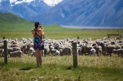 New Zealand Adventures 2017