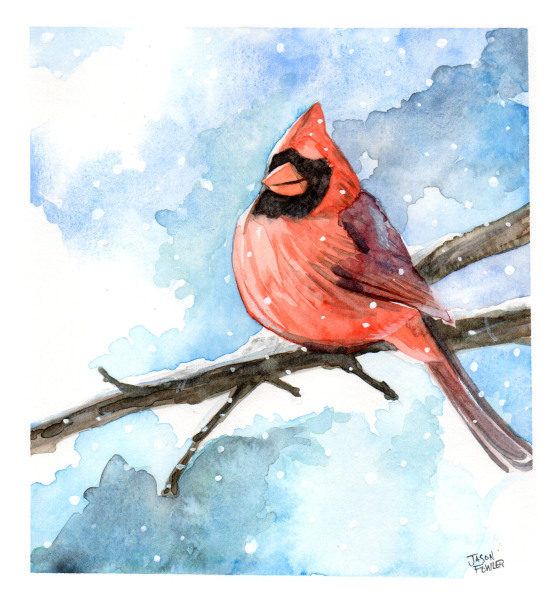 Cardinal on a Branch in Winter - Watercolor Painting -Jason Fowler