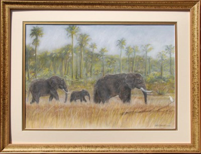 SA Elephant Walk