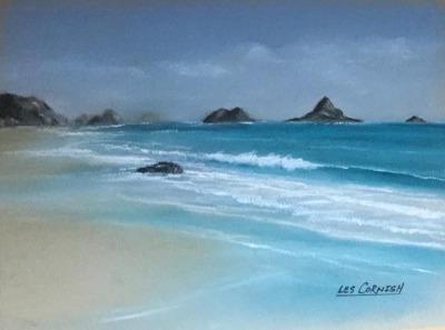 Harris Beach - Ebb Tide