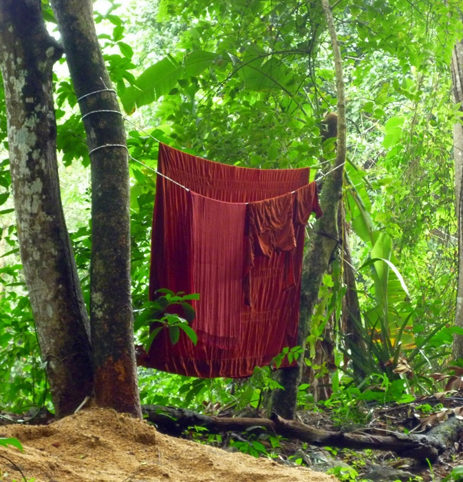 robe washing day in the forest