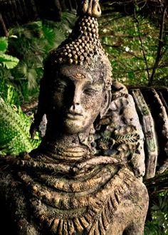 Dhammatāyana the deva visits the Buddha