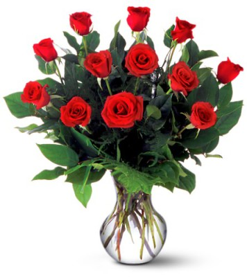 Large Dozen Red Roses