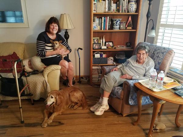 Adopt a Golden Retriever! GRCGLA Rescue