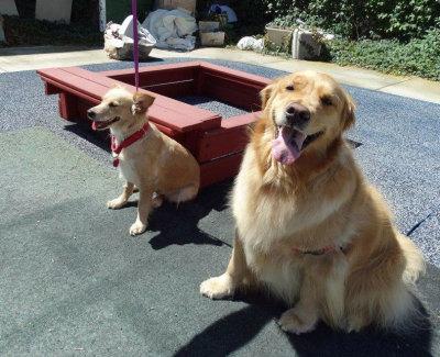 Annie & friend