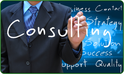 IT and Technology Consulting