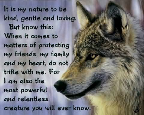 Friends With Nature