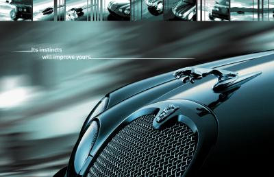 Jaguar Ad Campaign