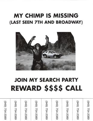 Lost Chimp