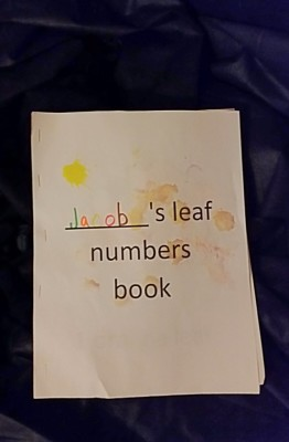 Fall Leaf Book