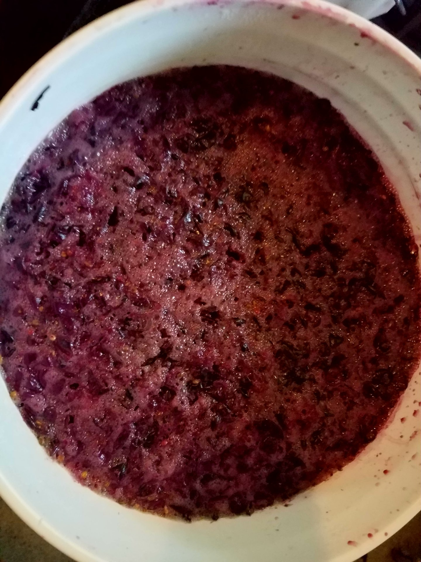 Home Winemaking with Juice