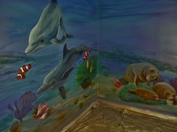 Underwater Mural 2
