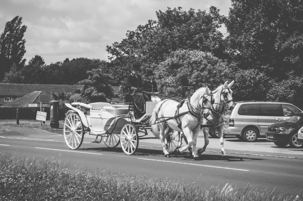 "<alt=""artistic wedding photography horse and cart"">"