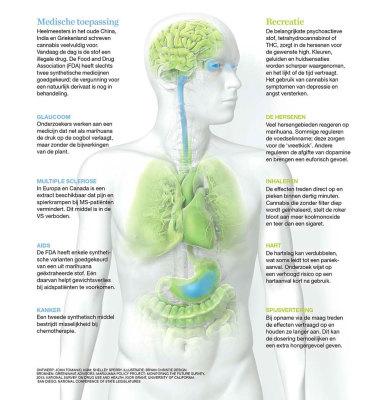 7 Tips om medicinale cannabis vergoed te krijgen van zorgverzekeraar