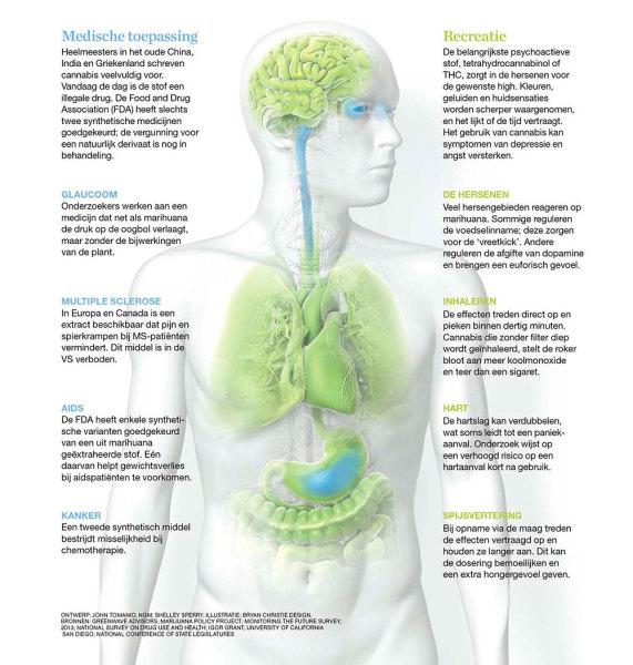 medische-toepassing-cannabis