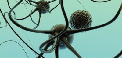 Cannabinoid Receptoren, de Alternatieve Behandeling van chronische pijn