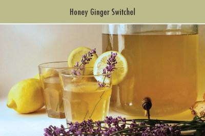 Honey Ginger Switchel