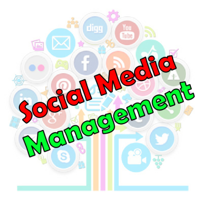 Social media management campaigns