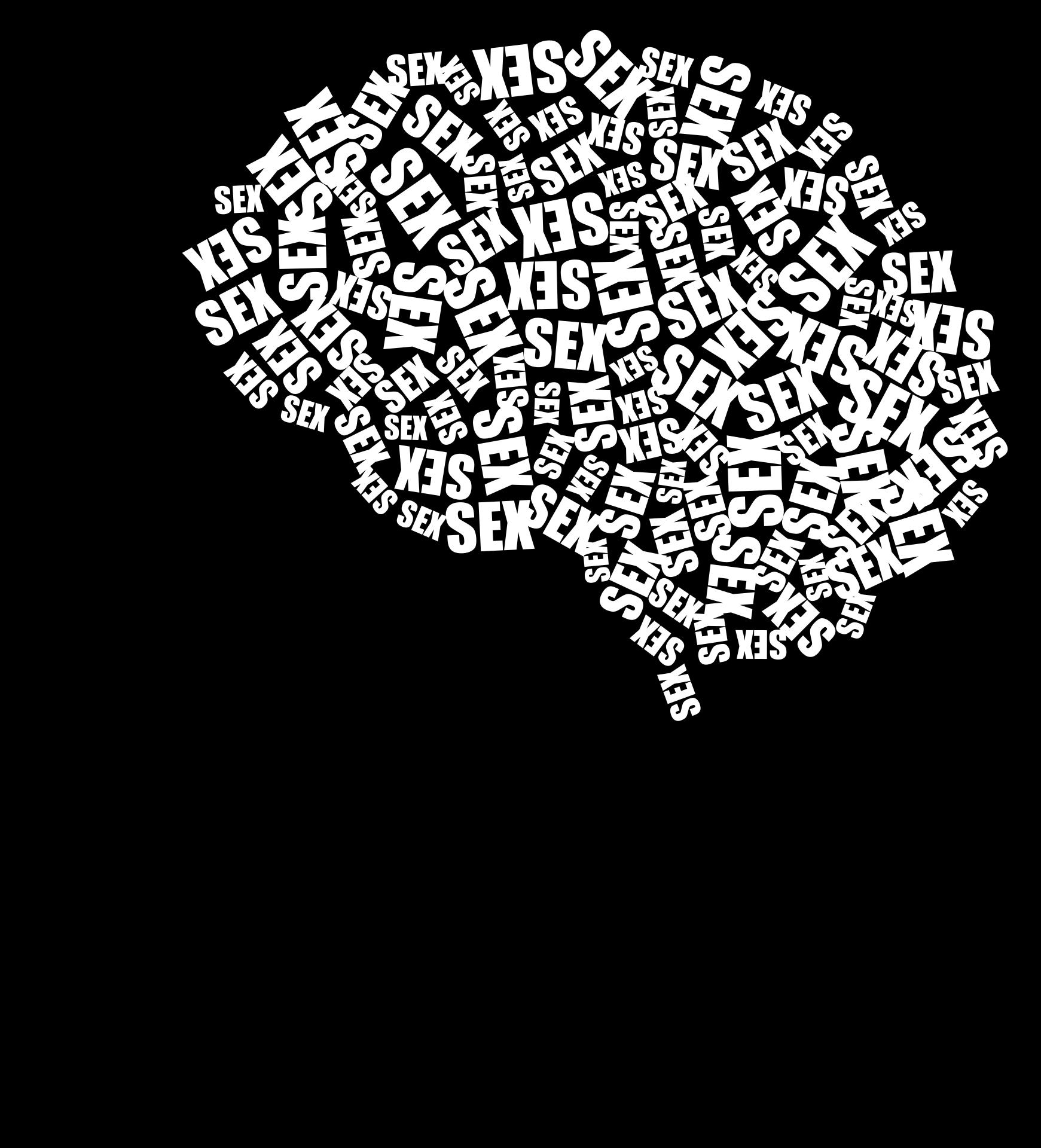 cranium-2952566