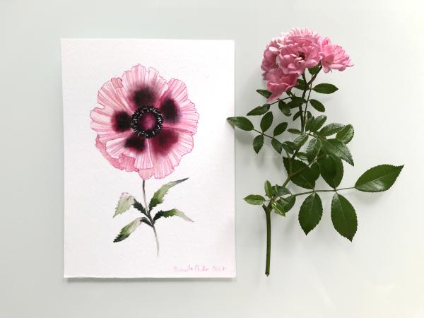 *Oriental Poppy* original watercolor artwork €40