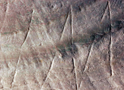 Oldest Human Engravings