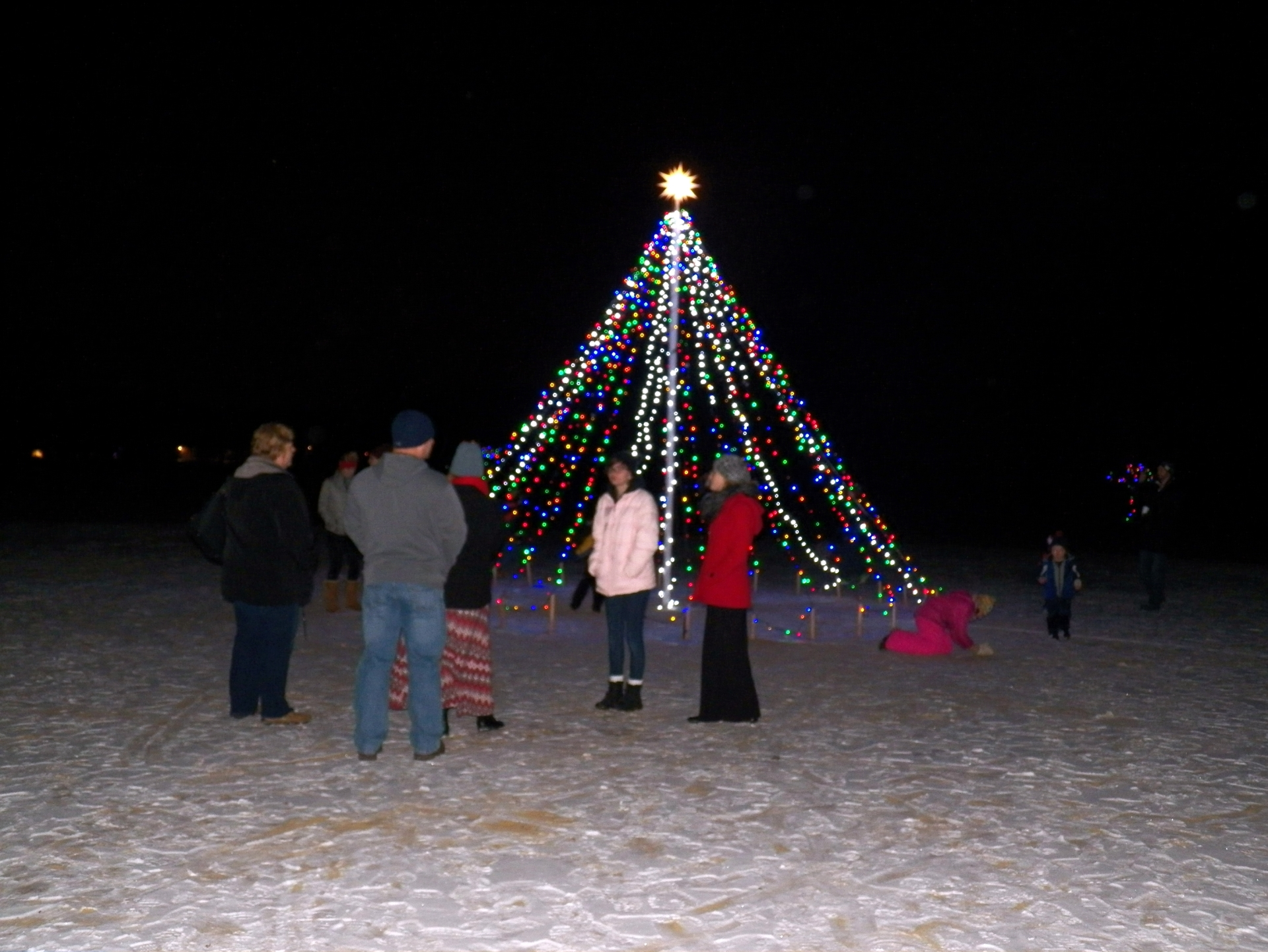 The lighted big tree