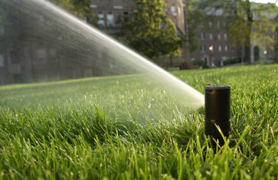 Lawn Irrigation and Maintenance