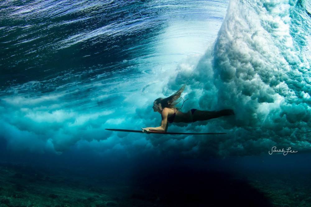 Surfer google8a313df8b2b54265.html