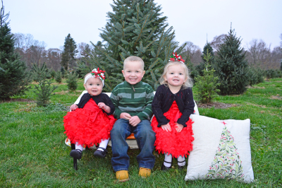 Christmas Tree Farm Mini Sessions!