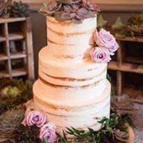 custom cakes nj semi naked lightly iced cake succulents lavender
