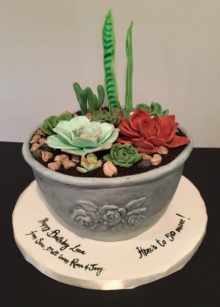 custom cakes nj flower pot succulents cake