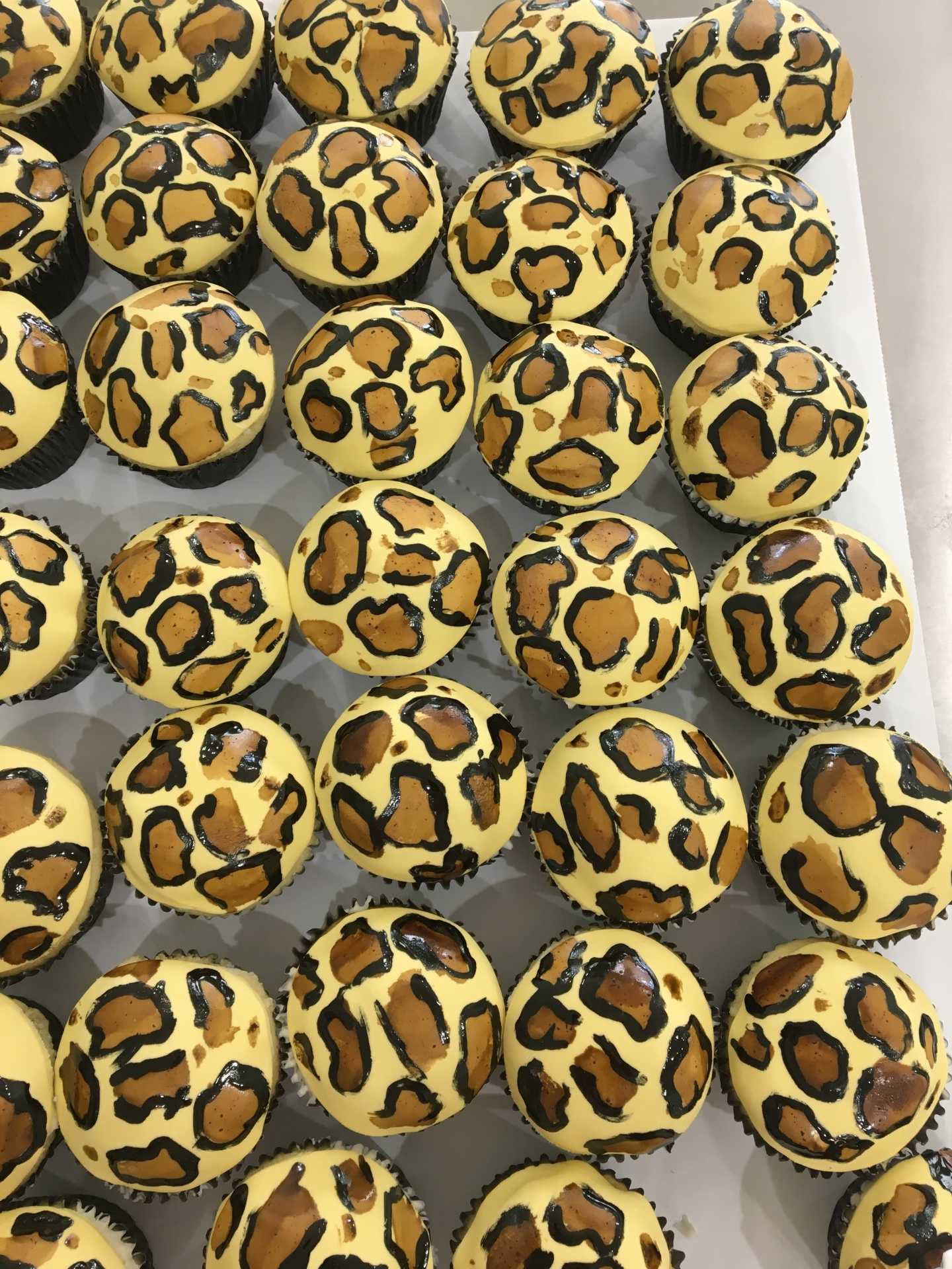 chita print cupcake animal print