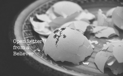 Open Letter from a Believer