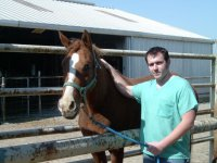 horse, cow, dermatology, allergy, allergies, skin, Rossi, Houston, gulf coast