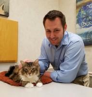 dog, cat, allergies, allergic, ear. gulf coast, veterinary, veterinarian, Rossi, dermatology, testing, Houston