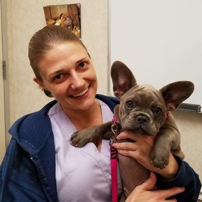 Rossi, veterinarian, dermatology, dermatologist, cat, dog, ear, skin, allergies, allergic, Houston, gulf coast