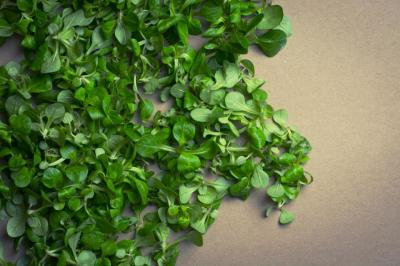 Ditch the Dye -Naturally Green St. Patty's Day Recipes!