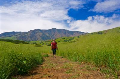 Dietitian's Backpacking Survival Guide